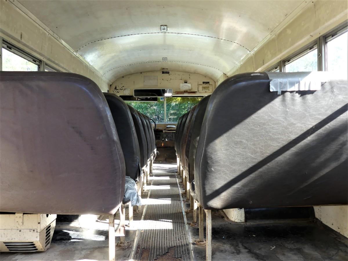 Bus int.2