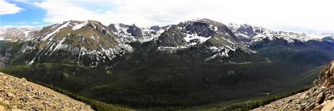 forest canyon panorama