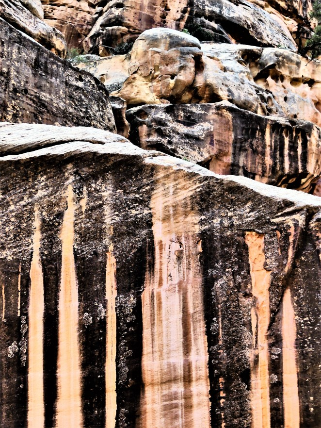 scenic hwy canyon wall1