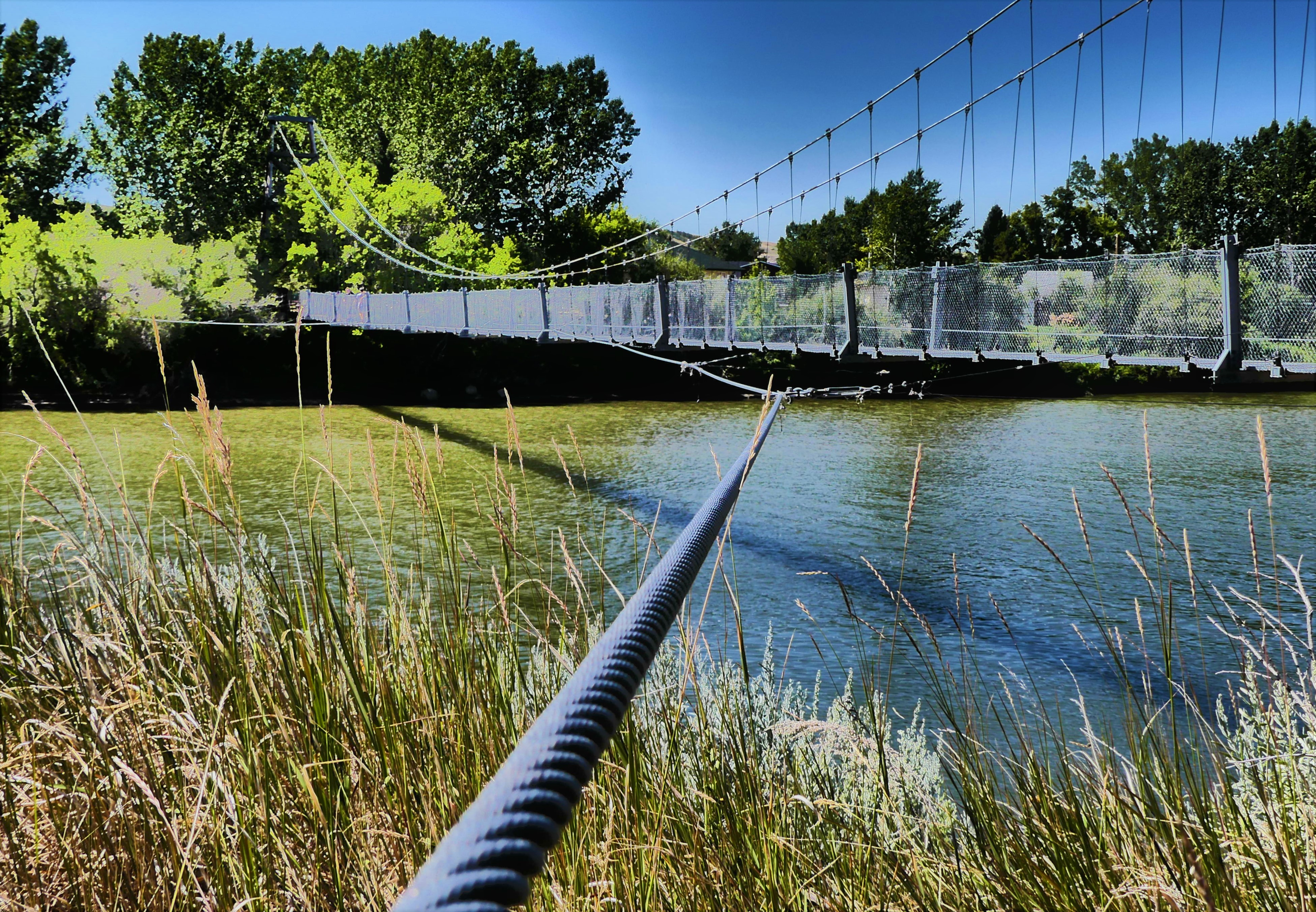 bridge cable