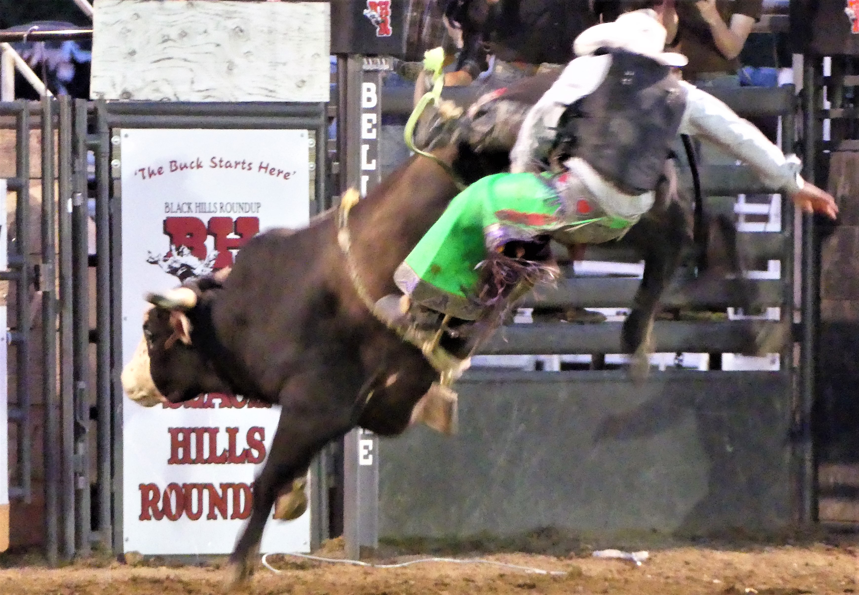 bull rider after