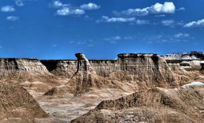 Cedar Pass Fossil Area (2)