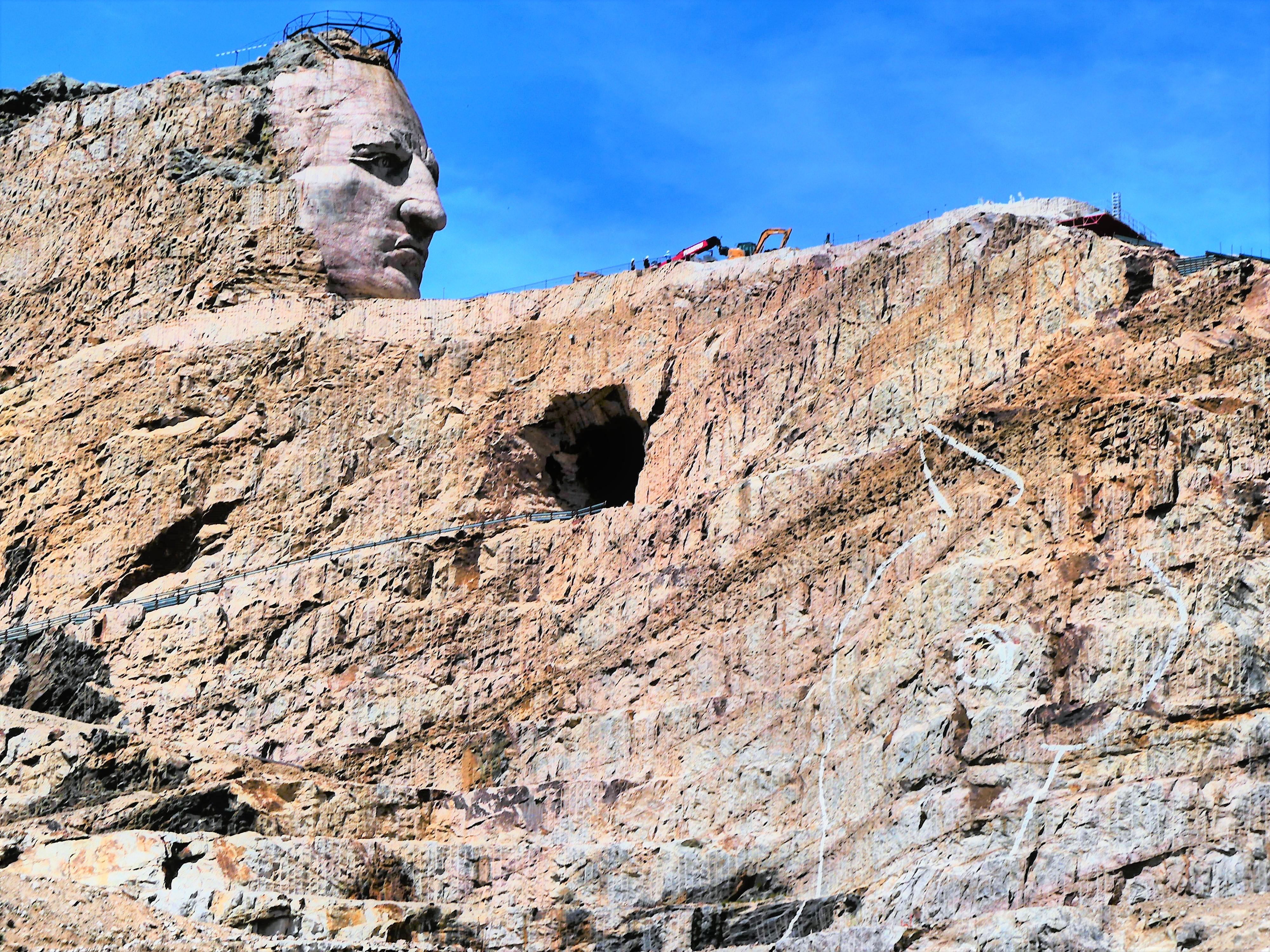 Crazy Horse LS