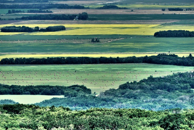 Manitoba Escarpment view