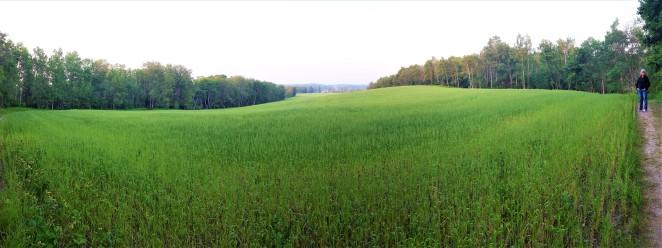 Prairie grass and Leah