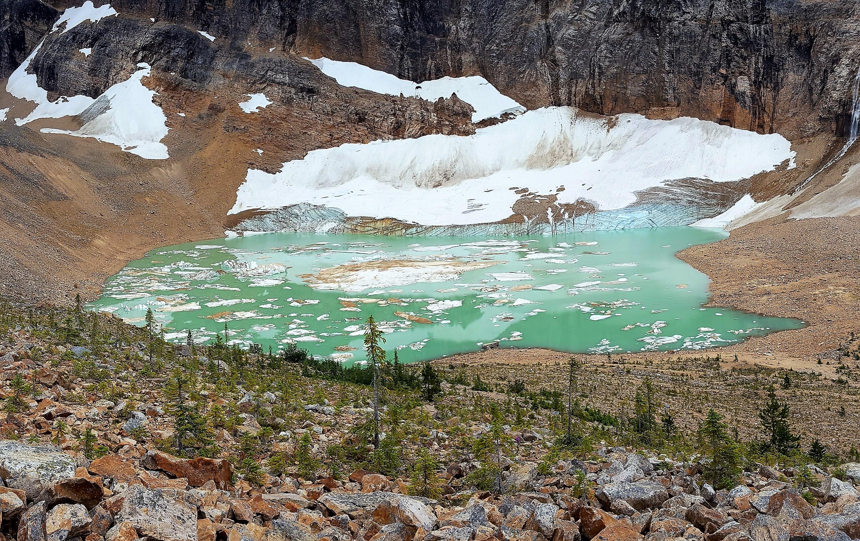 Cavell Glacier overlook