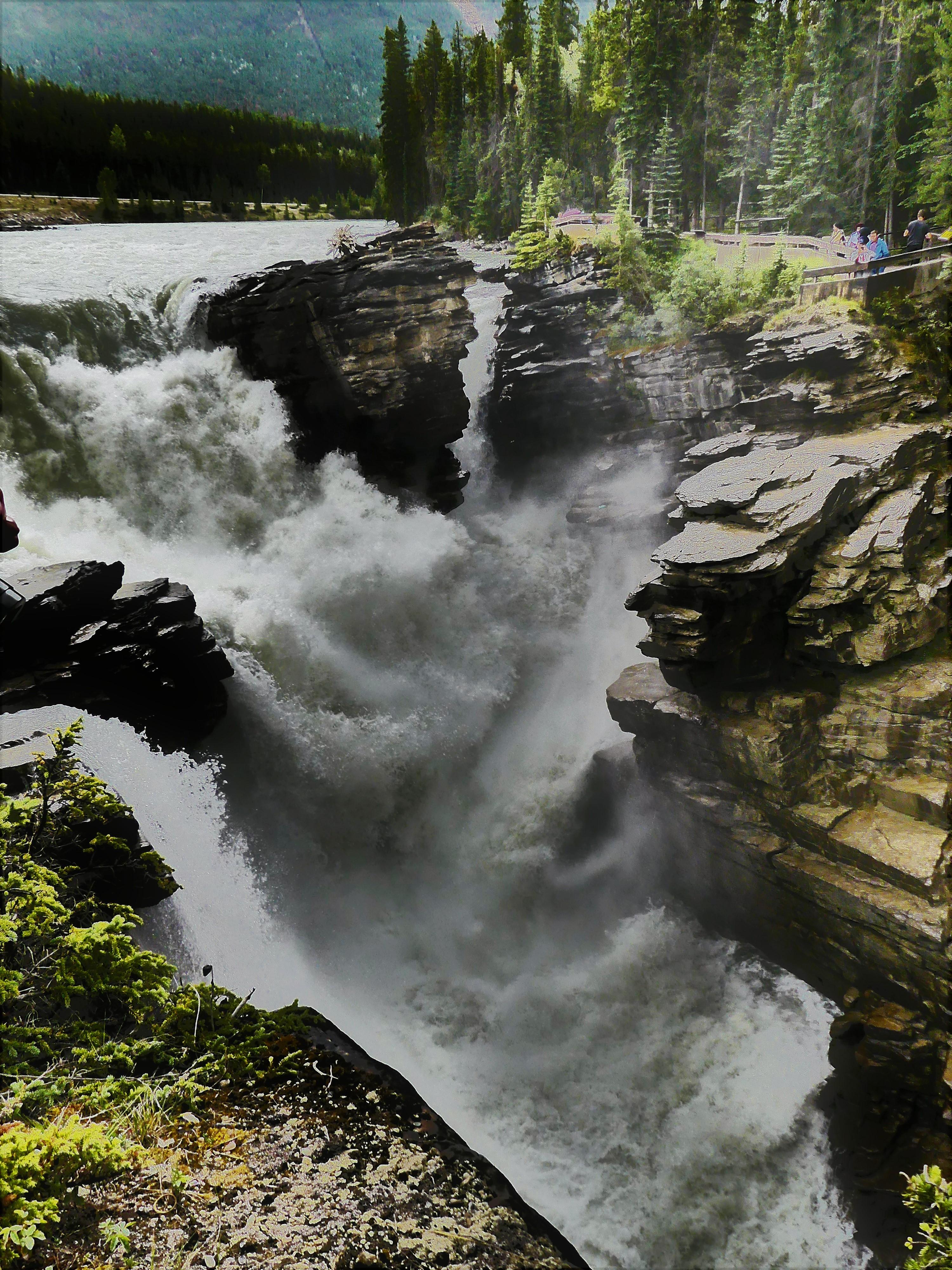 establishing falls