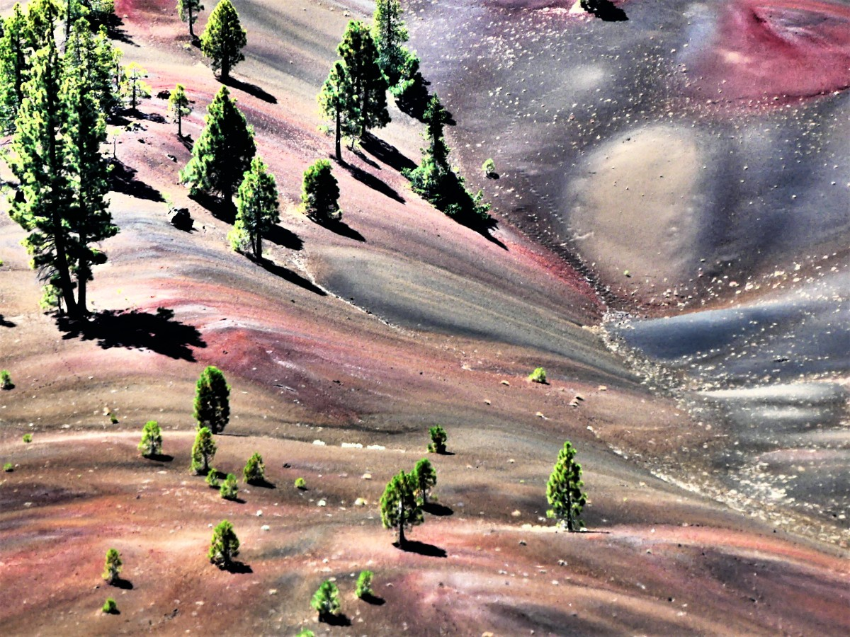 painted desert5