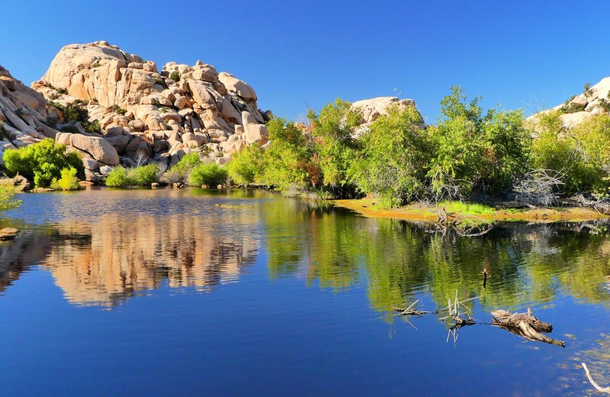 Barker Dam (2)