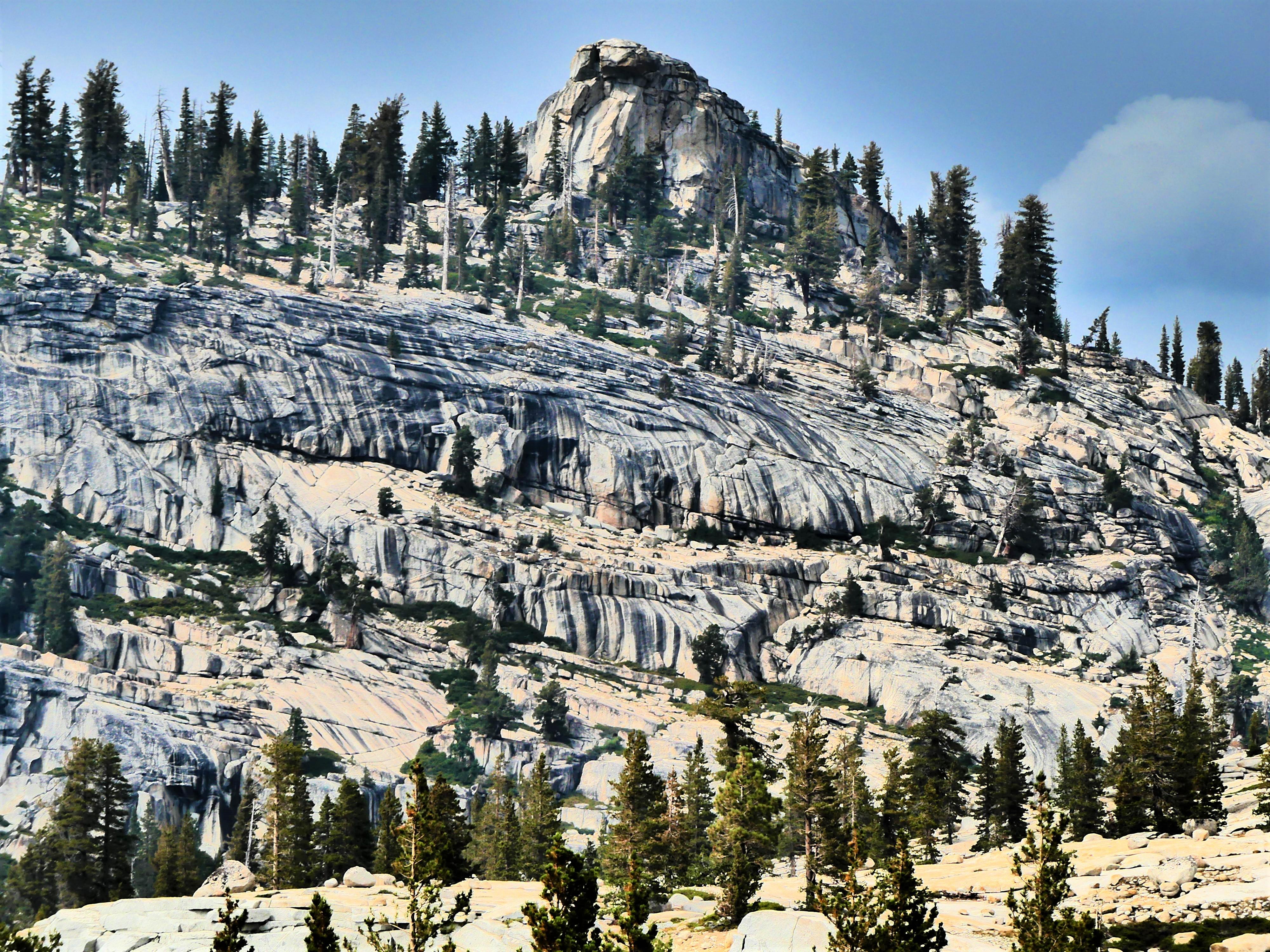 Mt. Hoffman