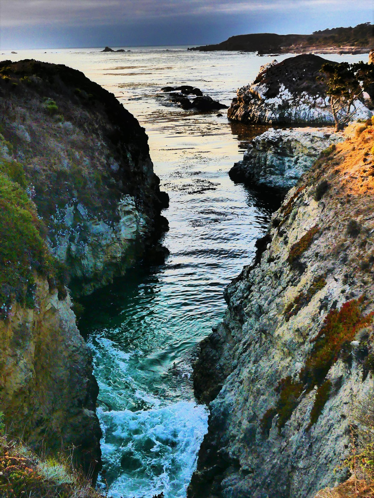 Point Lobos rocks