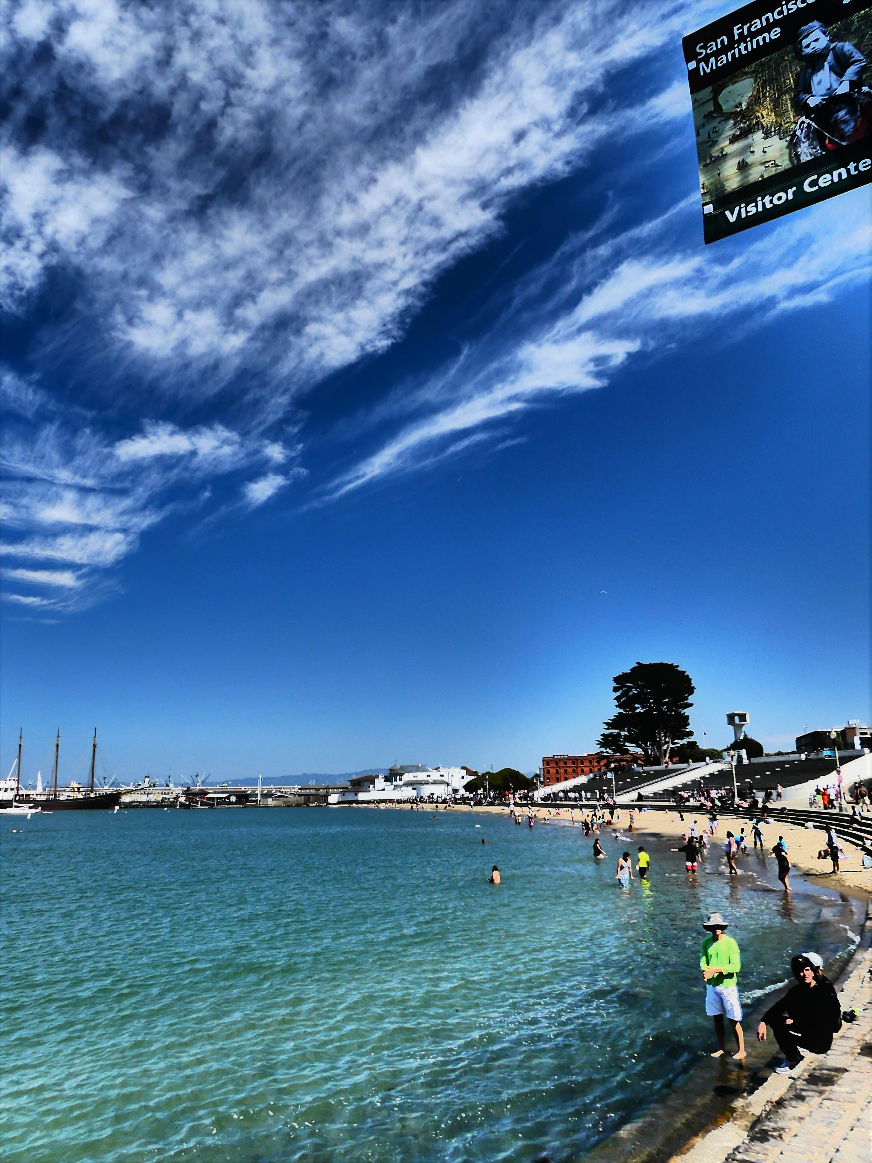SF beaching