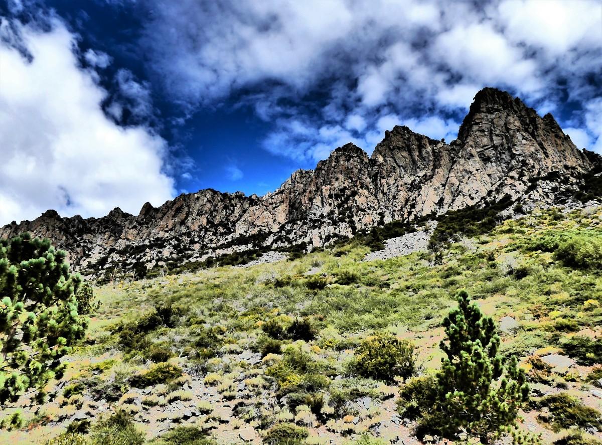 Tioga Peak (2)