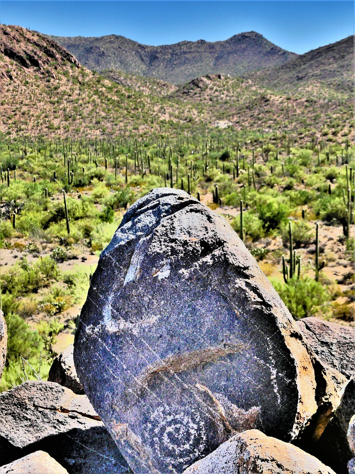 petroglyph and mountain1