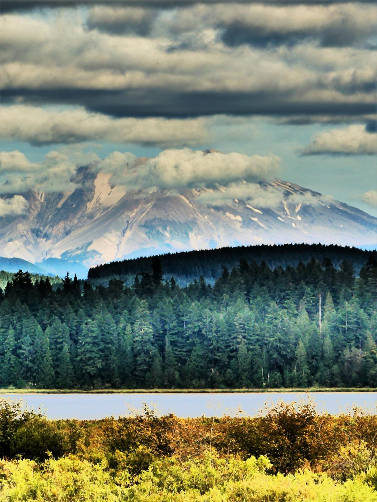 Mt. St. Helens1
