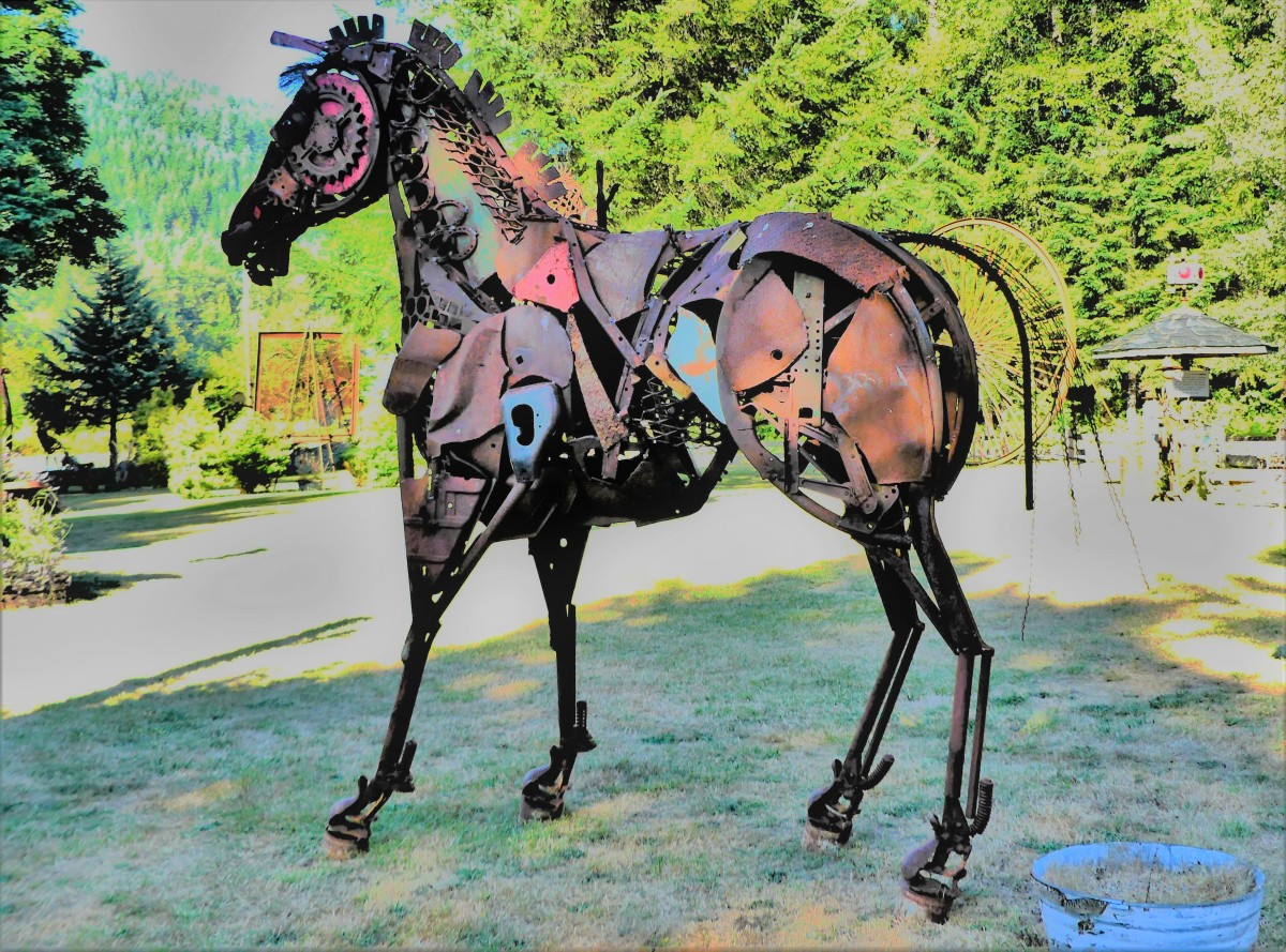 stallion (3).jpg