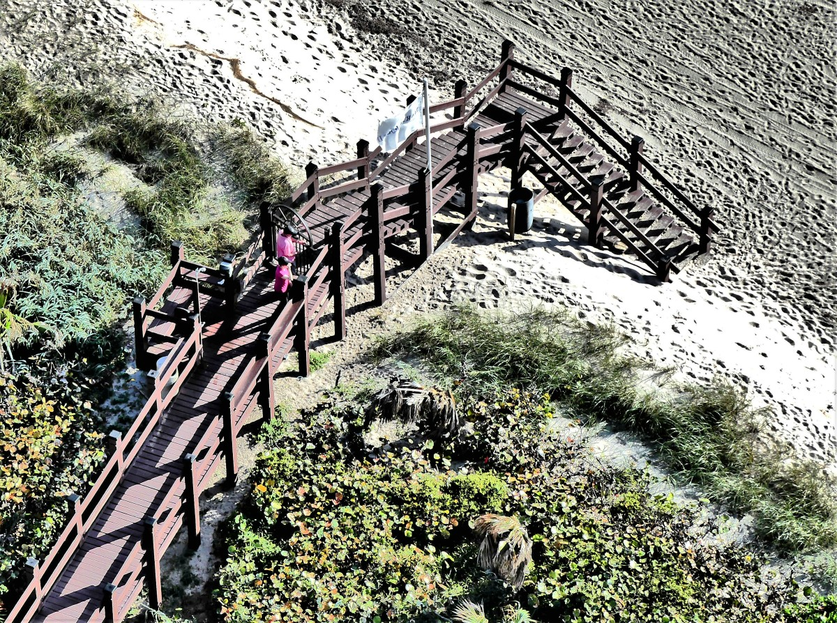 bridge over the dune