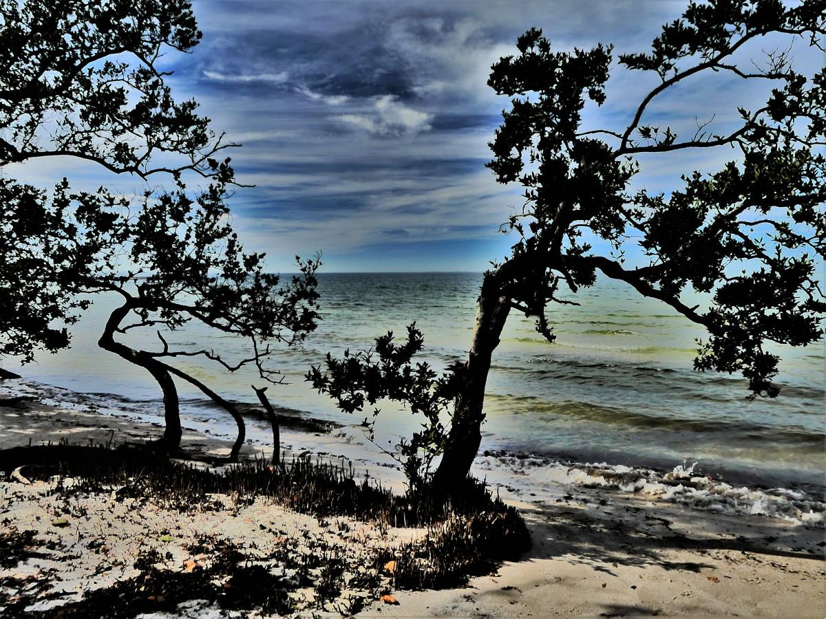 Naples Beach1