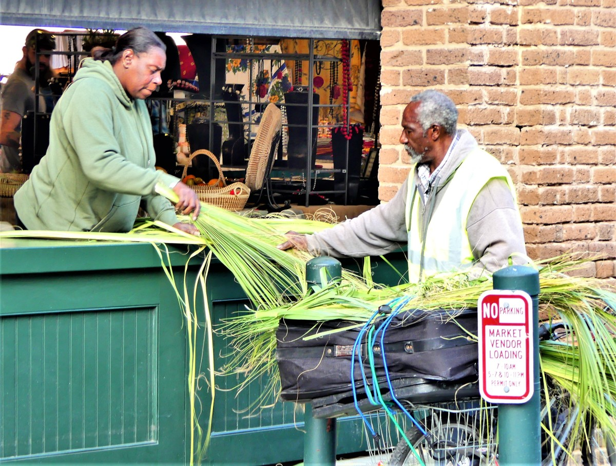 selecting sweetgrass