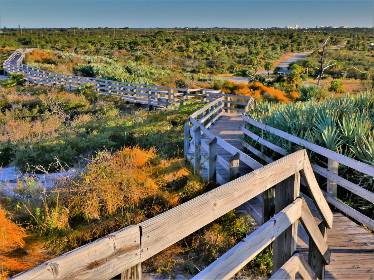 Hobe Mountain Observation Tower trail