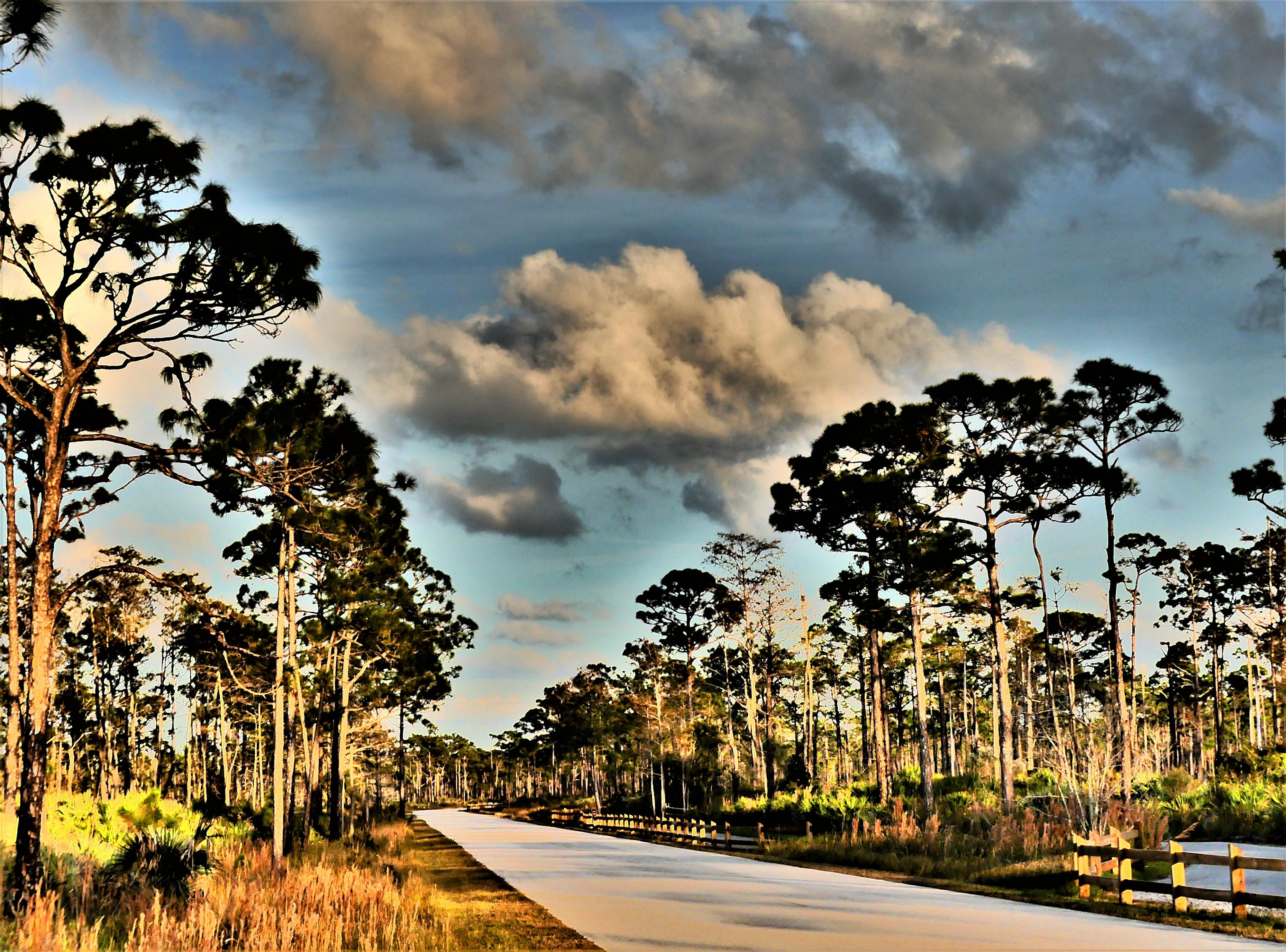 John Dickinson bicycle trail.jpg