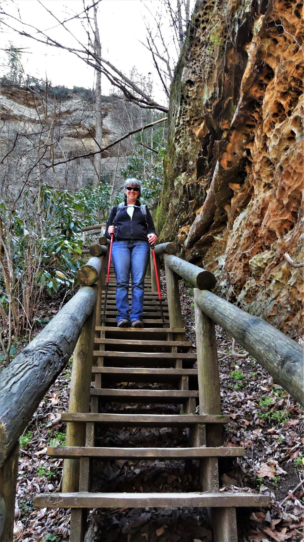 Kentucky Natural Bridge trail