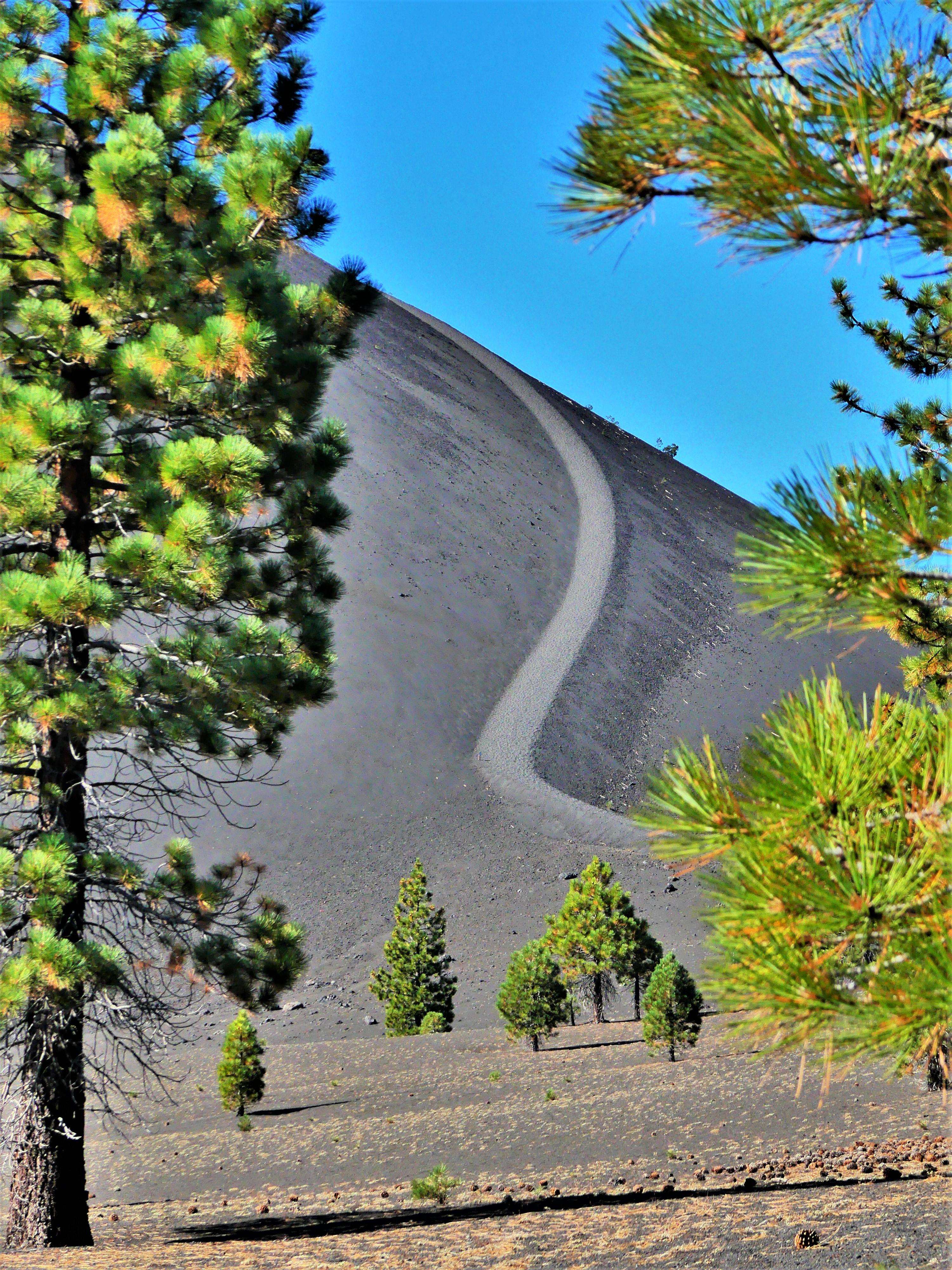 Lassen Cinder Cone trail