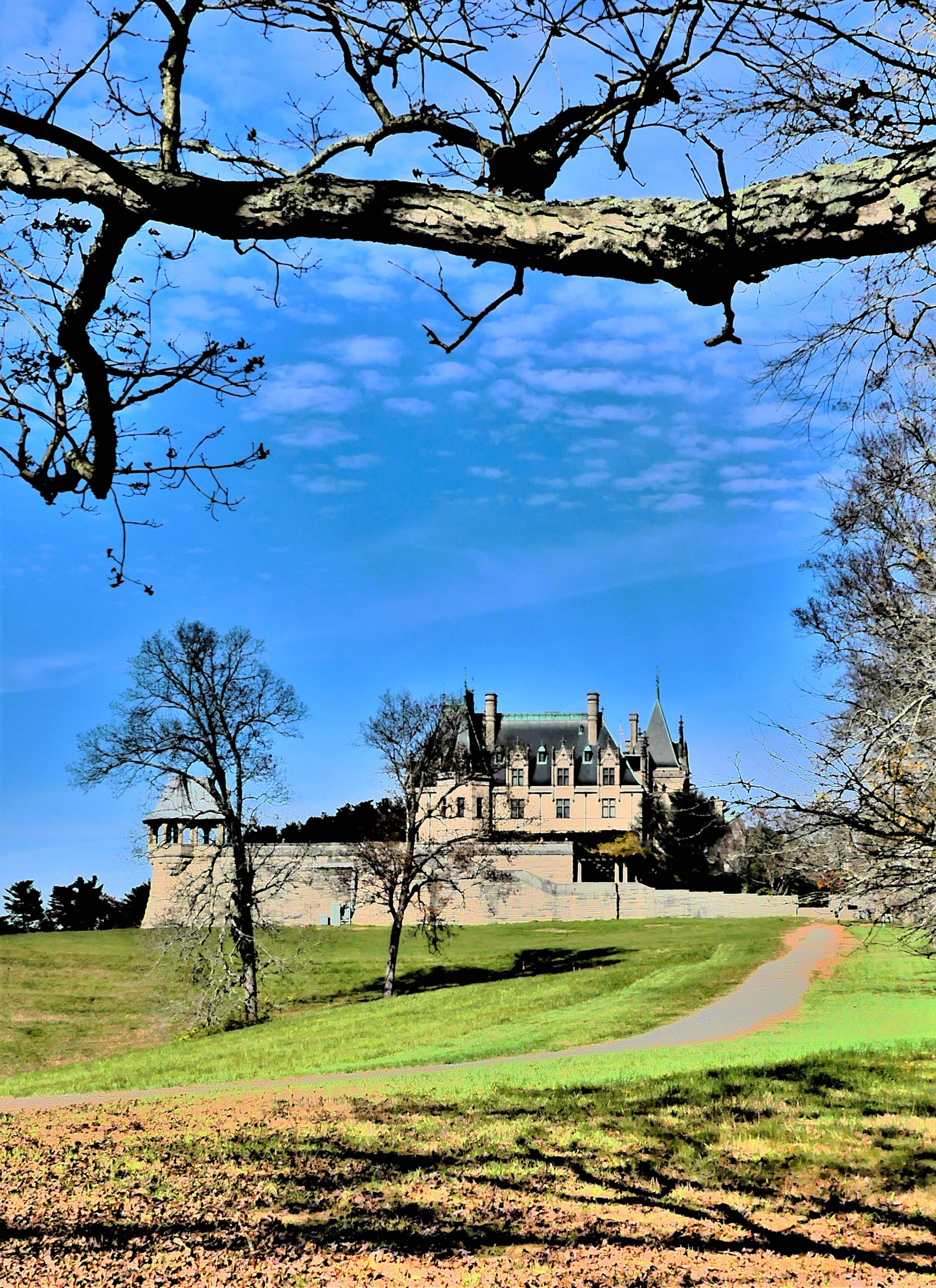 Biltmore Castle