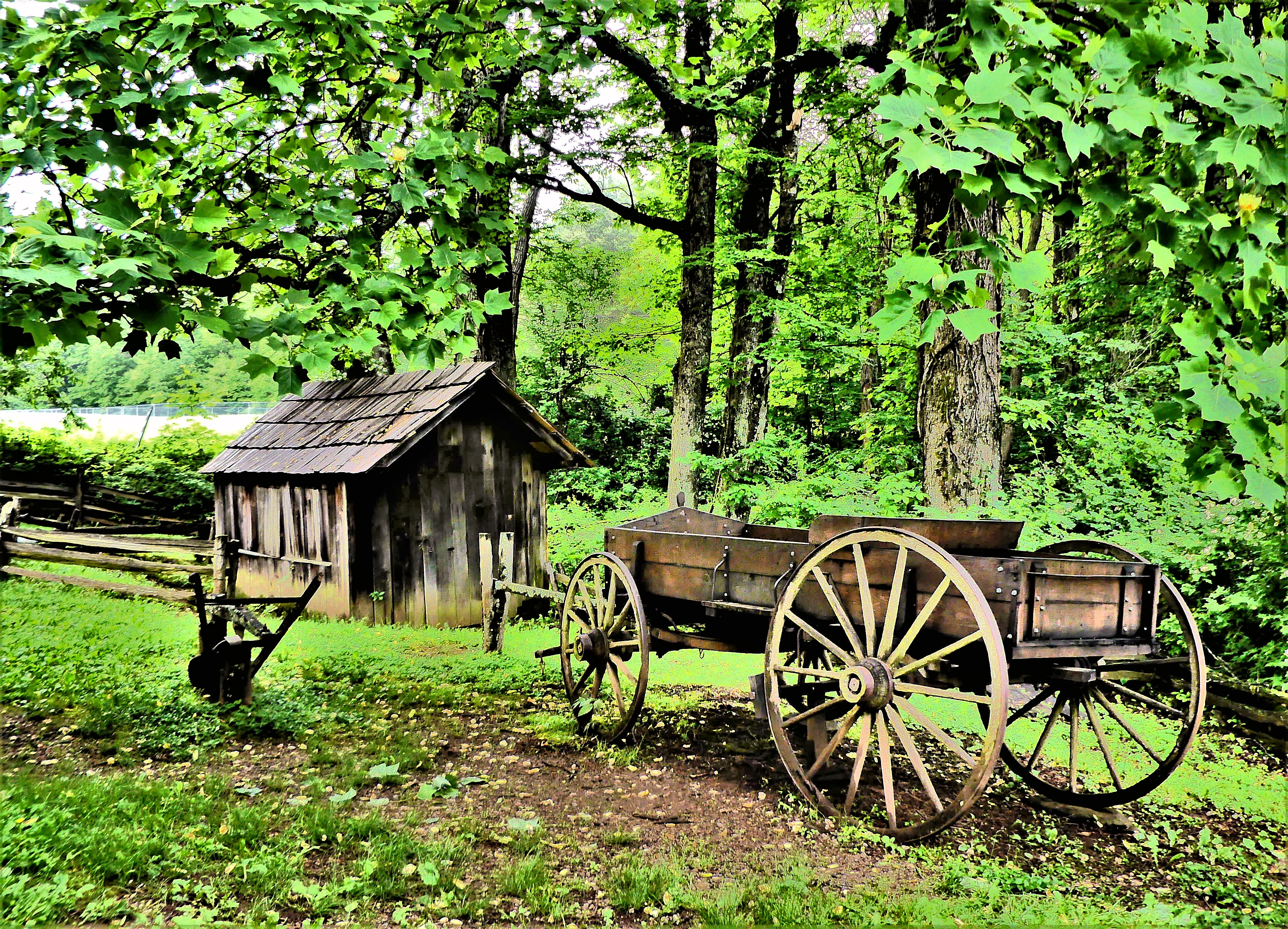 shed and wagon