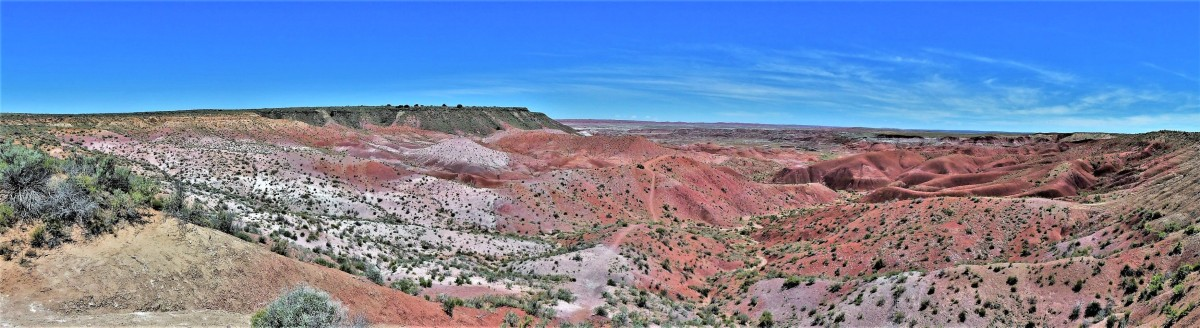Painted Desert, Petrified Forest NP