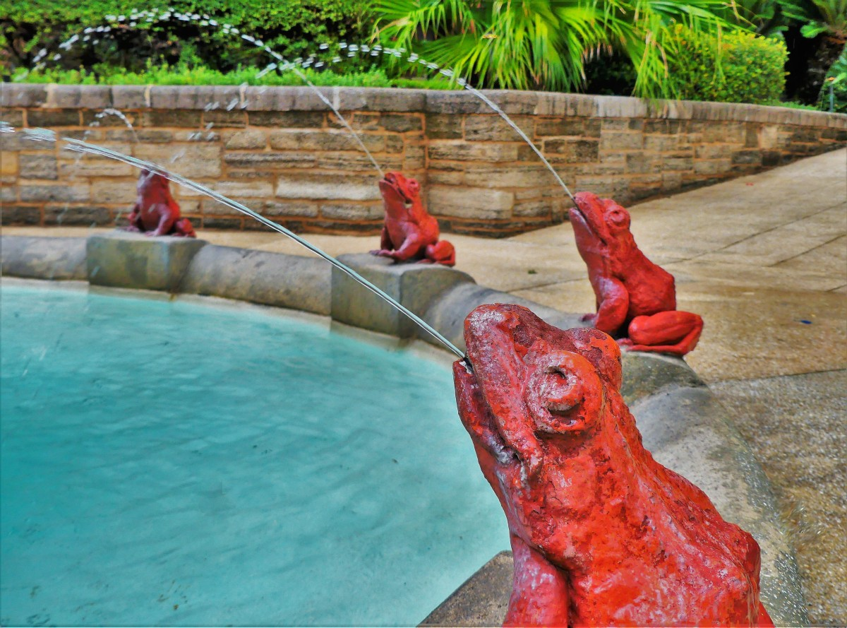 spitting frog fountain (3)