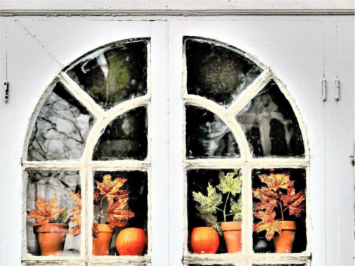 pumpkin arch (2)
