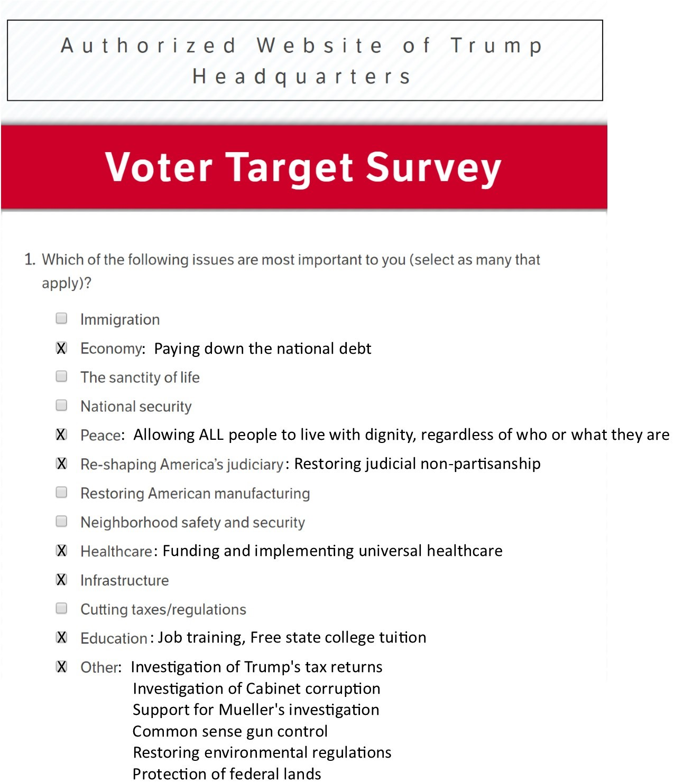 Survey 1 (2)