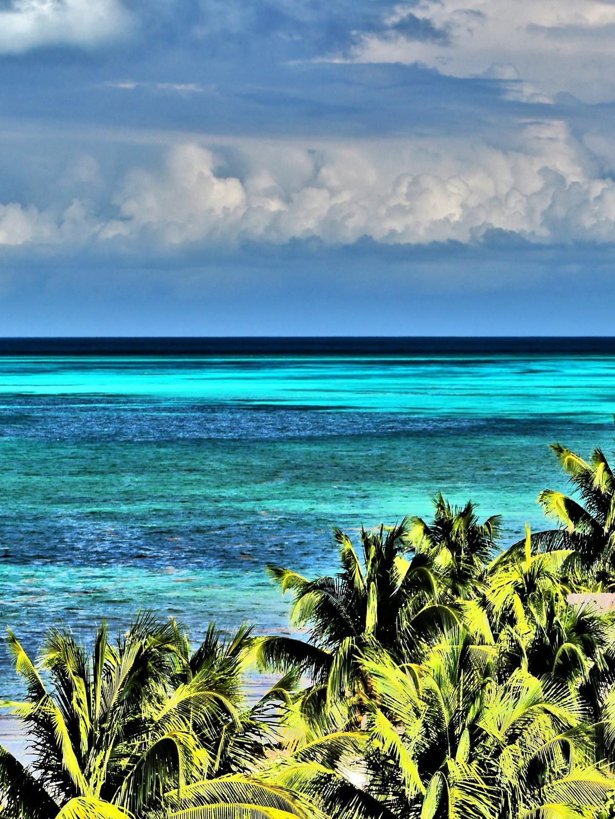 tropic seas (2)