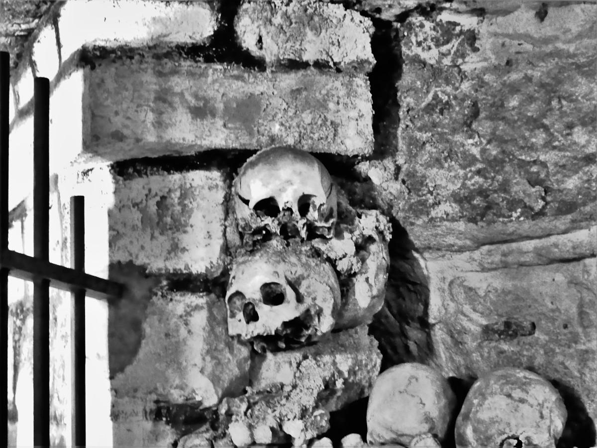 embedded skulls