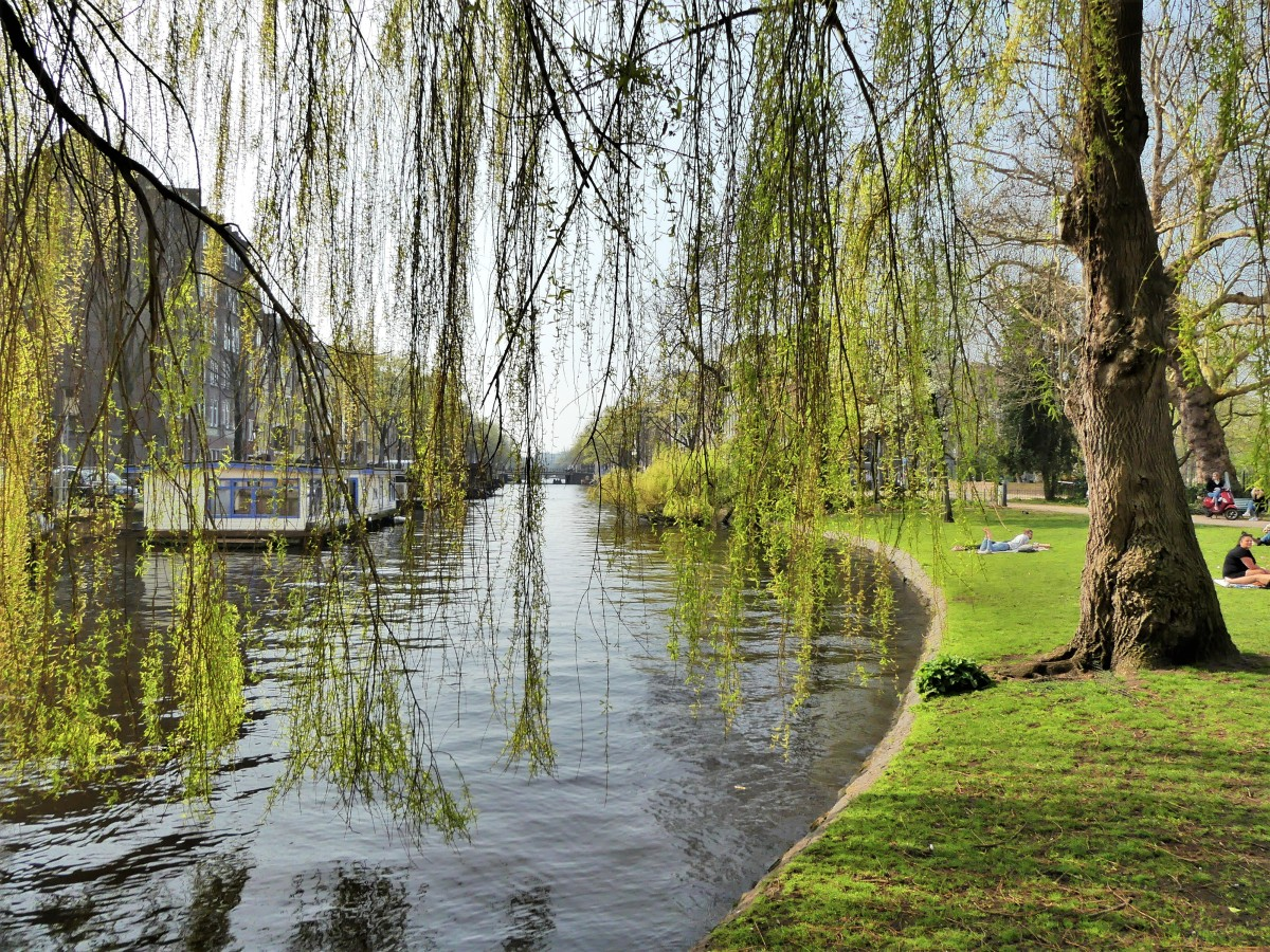 park canal.jpg