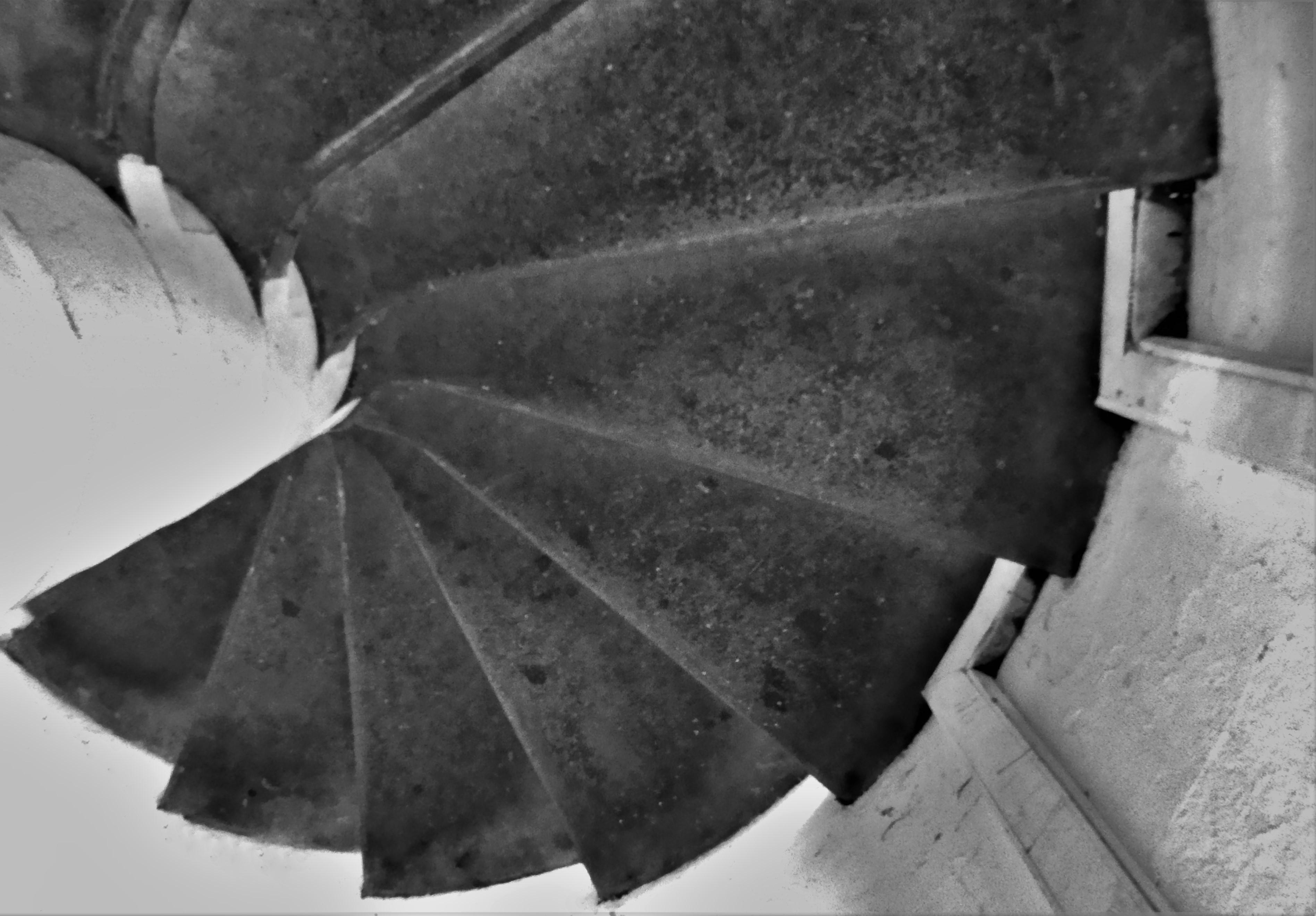 spiral (2)
