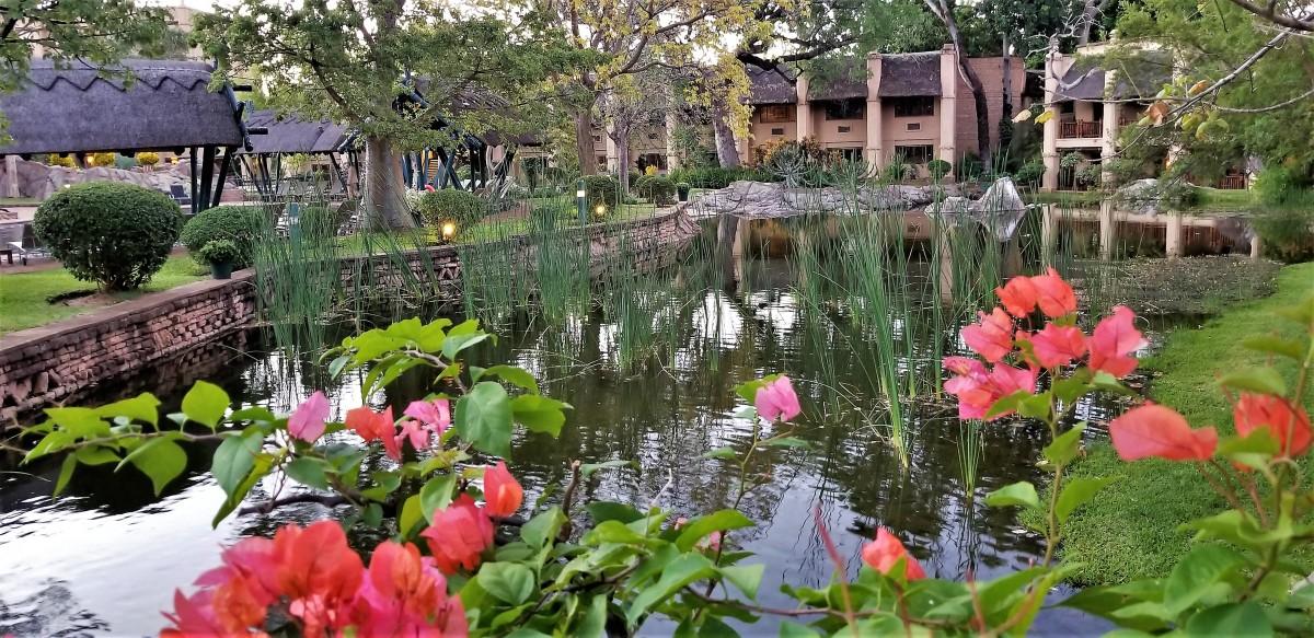 Kingdom pond 2