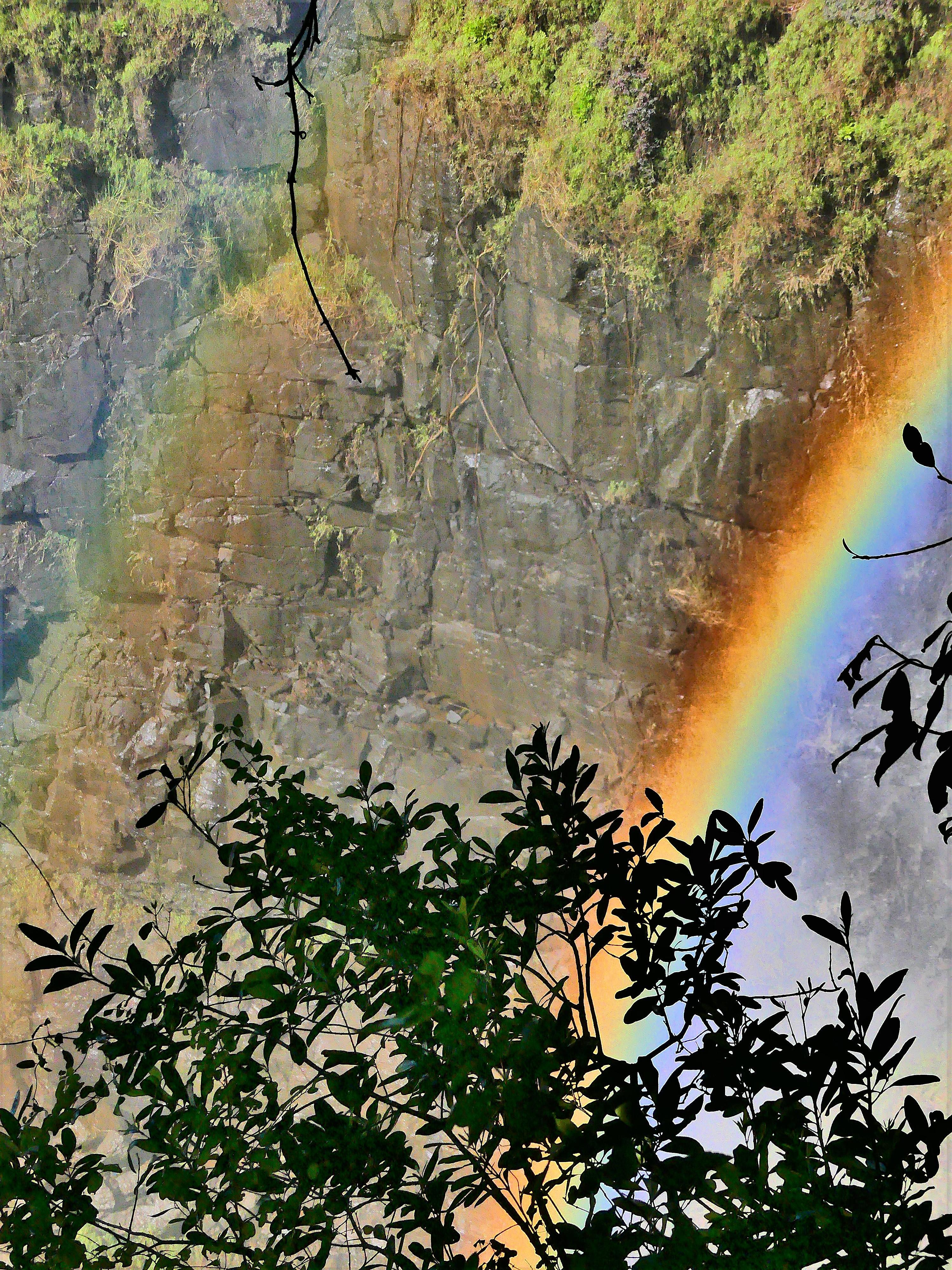 misting rainbows