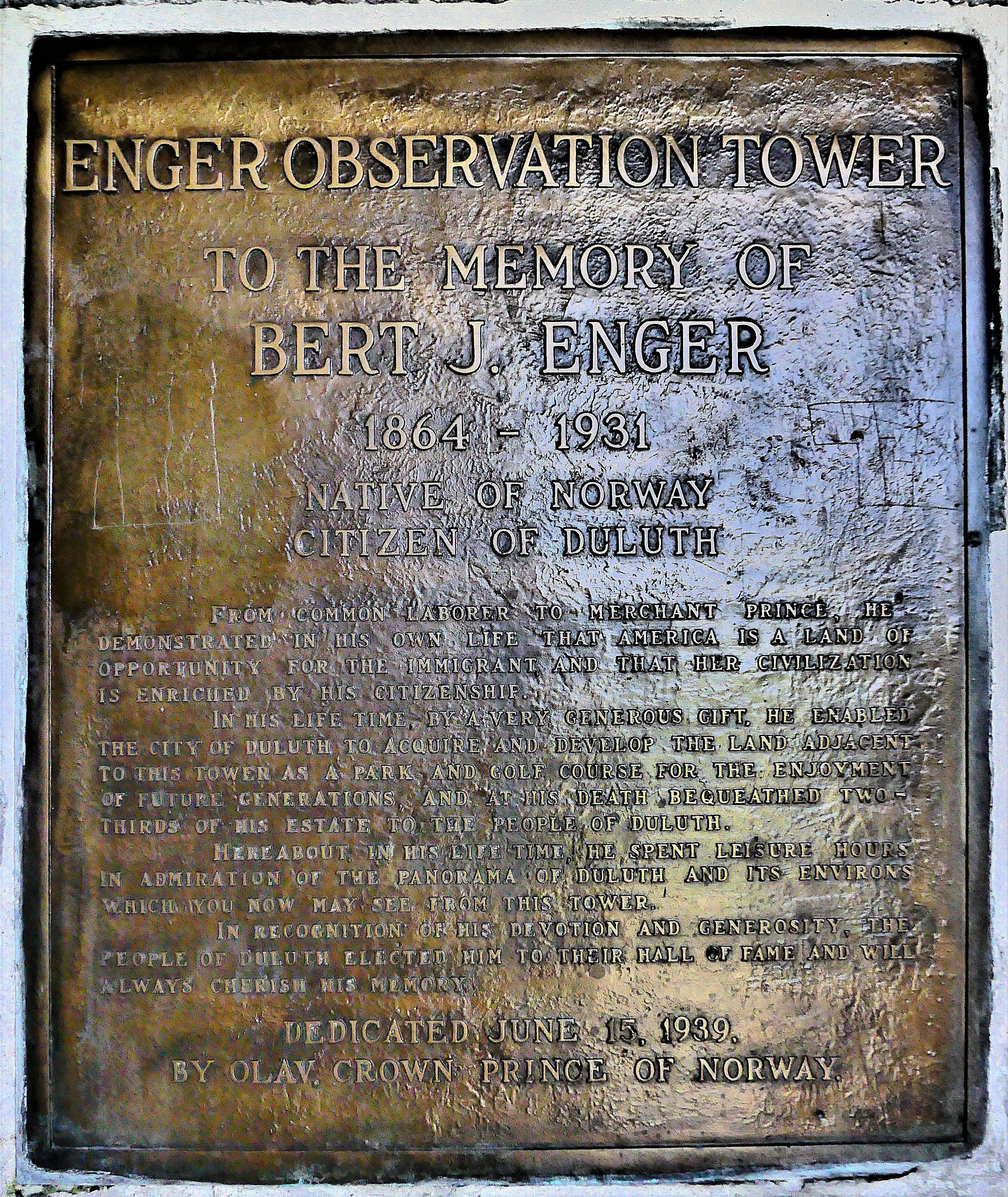 Enger plaque (2)
