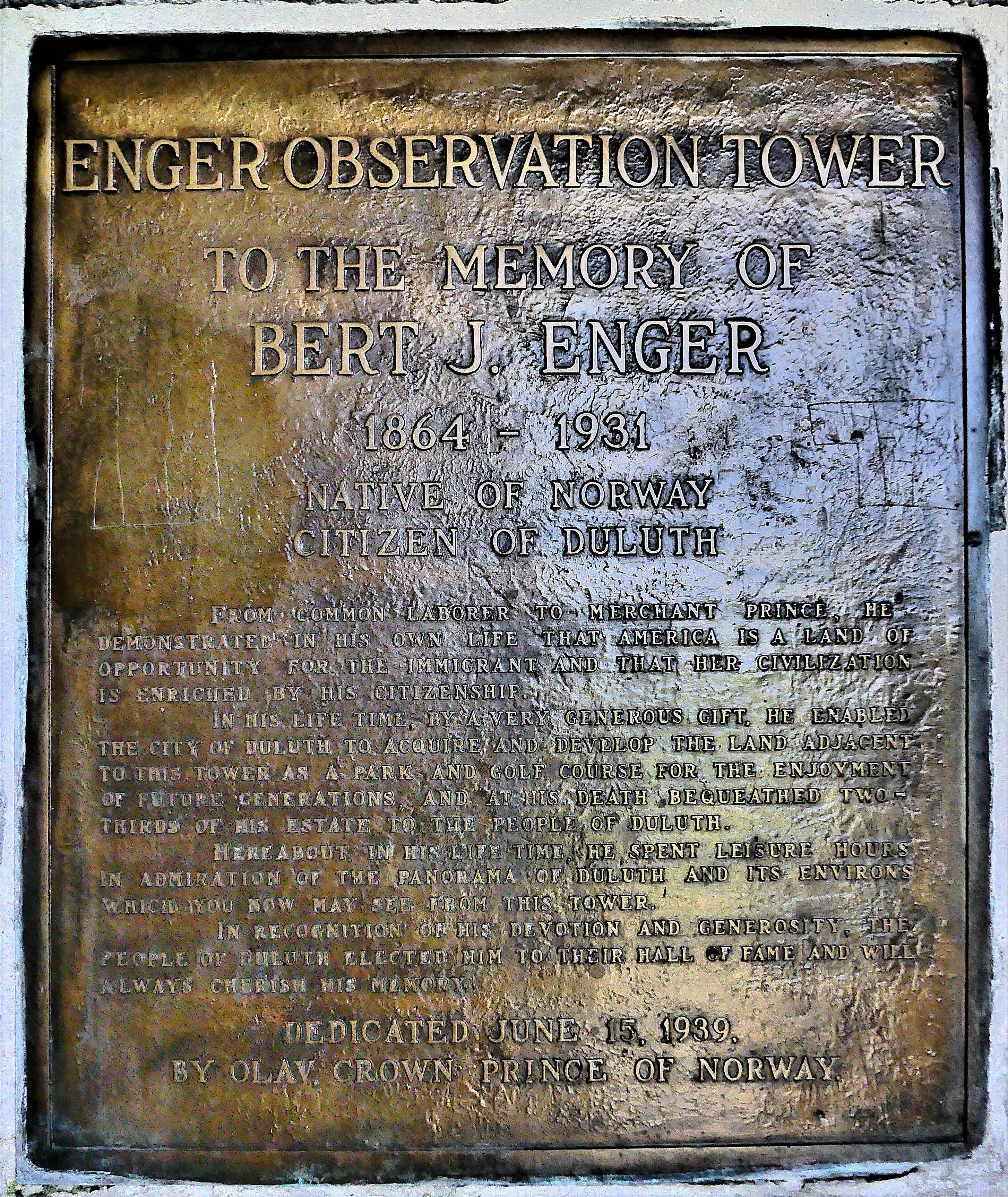 Enger plaque (2)