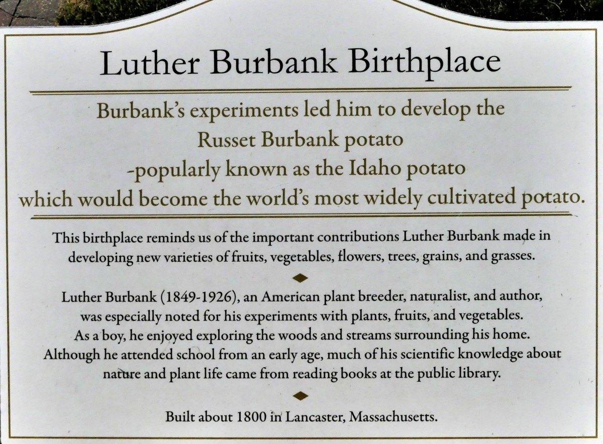 Luther Burbank sign