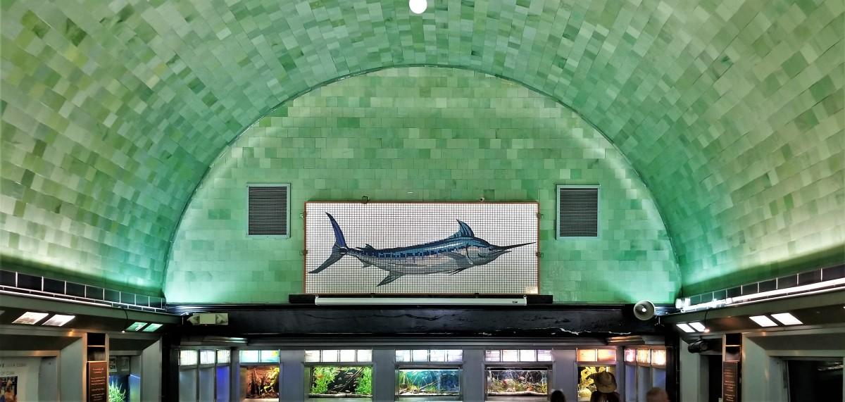 Marlin mosaic