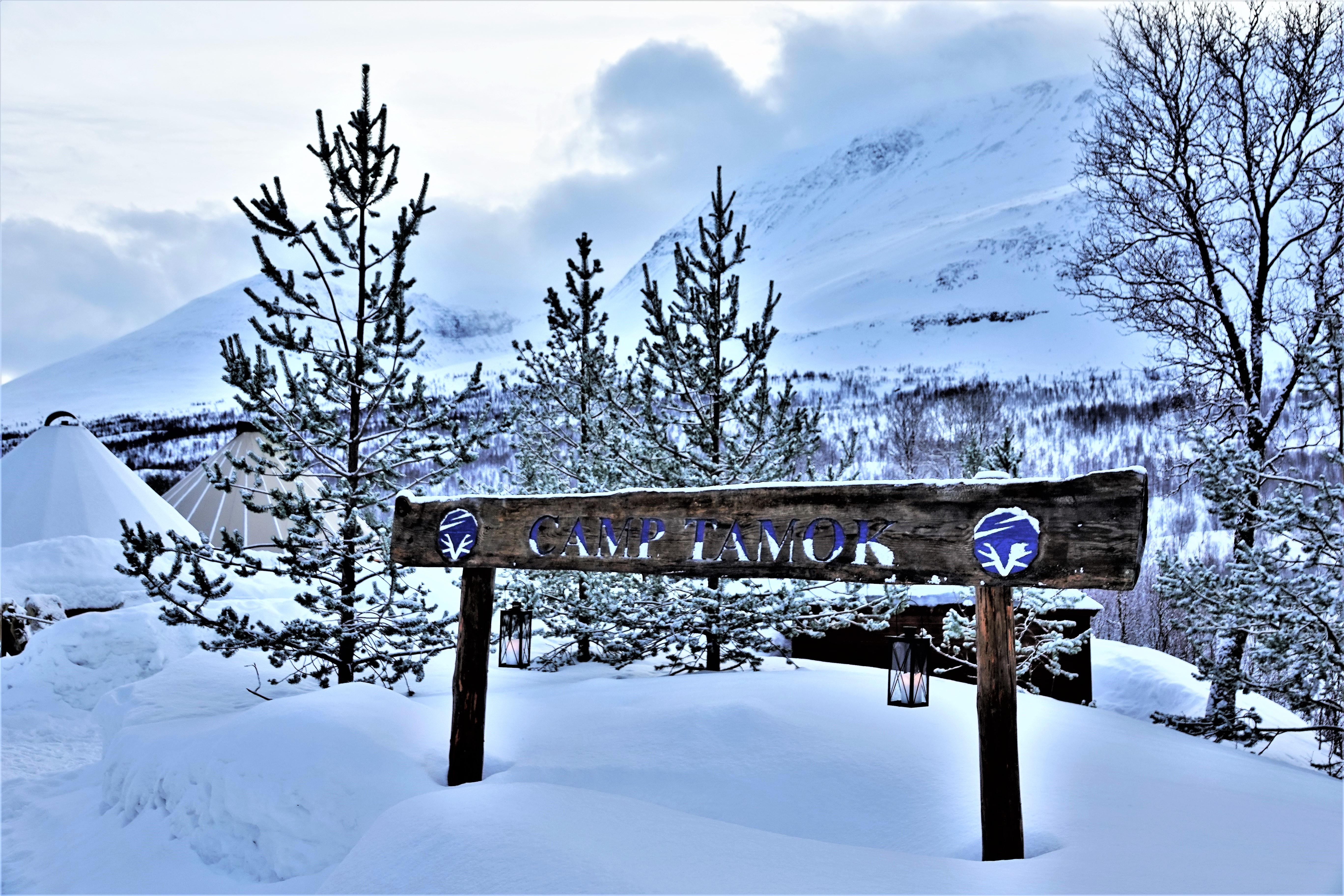 camp signage (2)