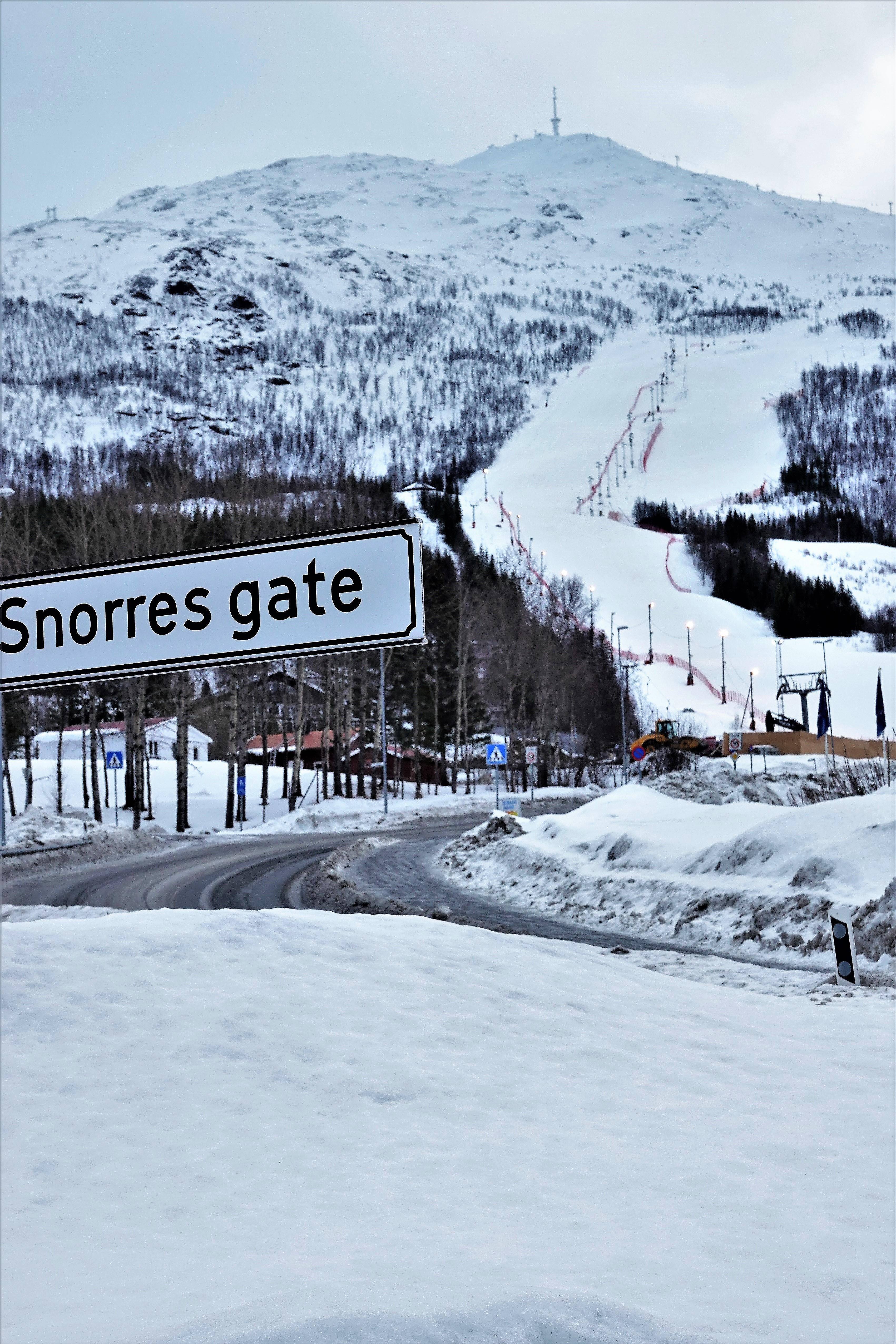 Snorres Gate
